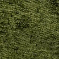 Moss X | Colour 11