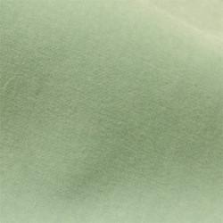 Moss I | Colour 35