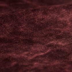 Moss III | Colour 09
