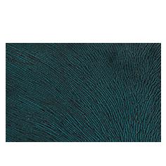Hide Velvet Peacock
