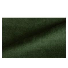 Paris Velvet Green